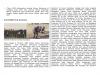 menwa-ubaya-page-003