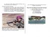 menwa-ubaya-page-006